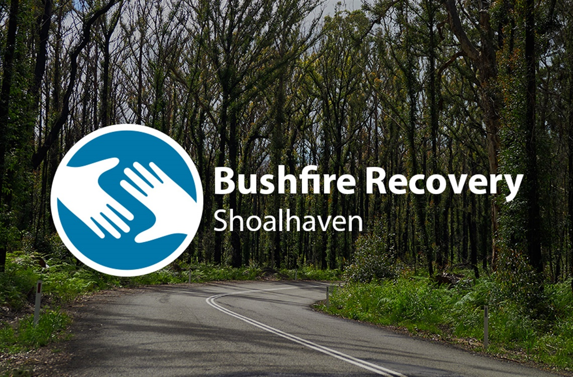 Bushfire recovery shoalhaven text set over road and recovering trees in background